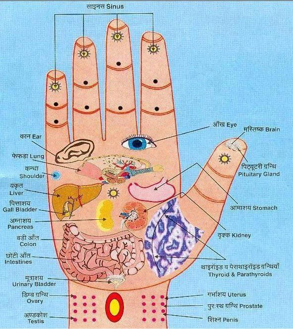 My own thoughts: Acupressure (Reflexology) Charts Collection