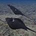 Με εκατοντάδες stealth «σελάχια-δολοφόνους» drones θέλει να ελέγχει το Αιγαίο το τουρκικό Ναυτικό! (βίντεο)