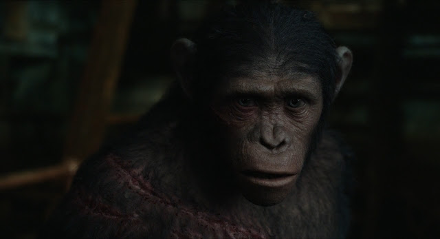 archives of the apes dawn of the planet of the apes 2014 part 24. Black Bedroom Furniture Sets. Home Design Ideas