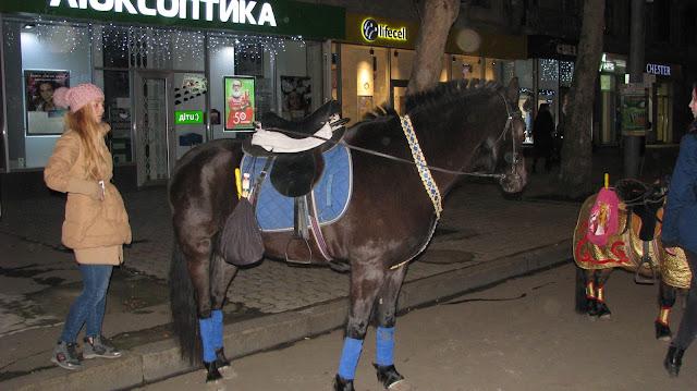 Кони в Николаеве