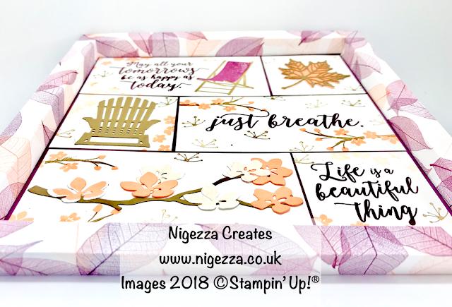 Shadow Frame Box Sampler Using Stampin' Up!® Natures Poem & Colourful Seasons Nigezza Creates
