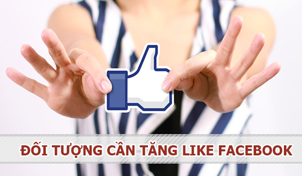 dich vu tang like facebook gia re