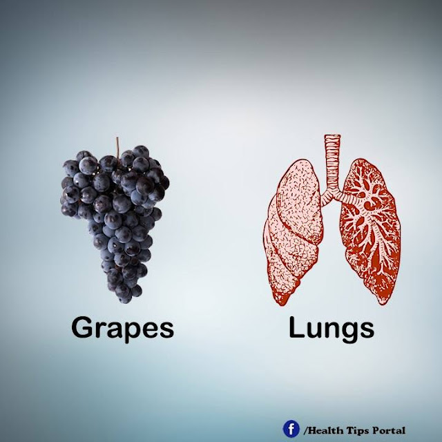 khasiat anggur