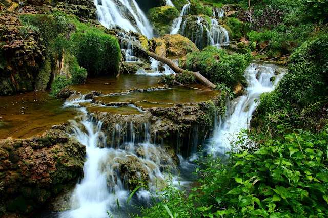 Waterfalls Forest Landscape