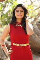 Telugu Actress Zahida Sam Latest Pos in Red Gown at RF Films New Movie Opening  0171.JPG