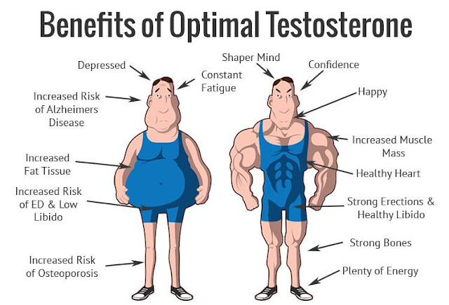 testosterone benefici
