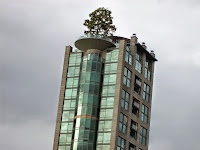Apartment building with a growing tree on its roof