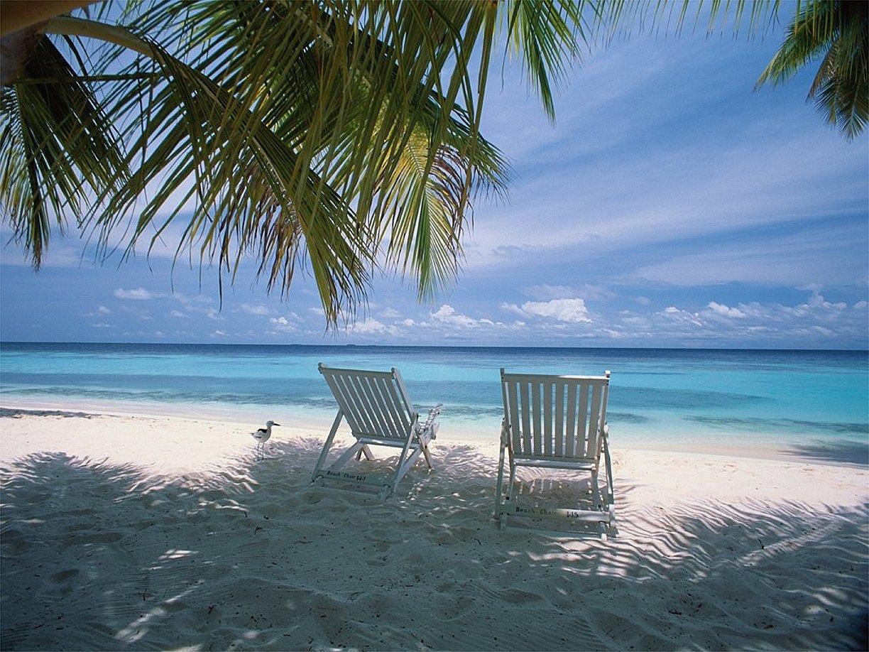Sanibel Island Attractions: World Visits: Sanibel Island In Florida, USA Wonderful
