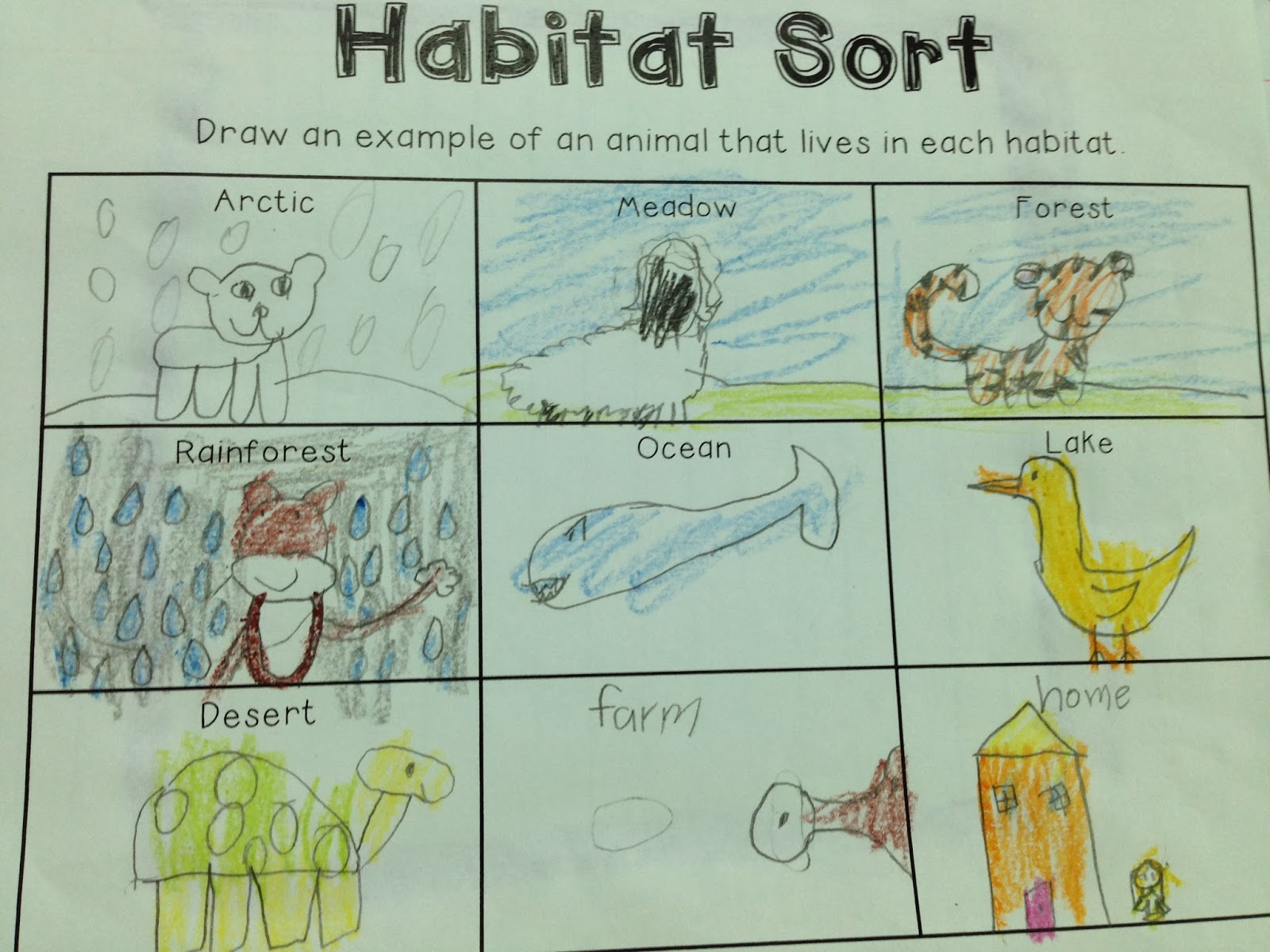 Sketch A Habitat Lake Worksheets Life Science And Learning