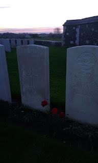 Winter- bloeiend roosje milit. begraafplaats