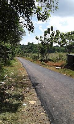 jl-sukaresmi-kampung-kurma