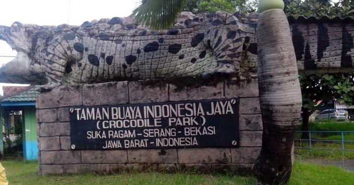 Taman Buaya Indonesia Jaya - Sulis Sha