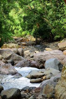 Rio Viejo Costa Rica