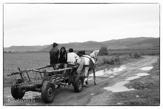 Ló vontatta szekér Erdélyben saras úton