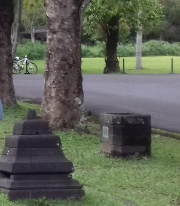 cerpen anak yatim ingin punya sepeda