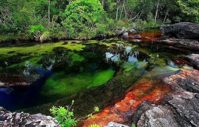 दुनिया की सबसे खूबसूरत नदी, जिसमें नज़र आता है रंग-बिरंगा पानी - newsonfloor.com