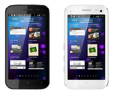 Micromax A110:5.0 inches