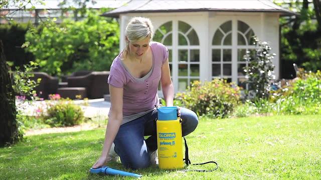 Dịch vụ diệt côn trùng uy tín và đảm bảo nhất