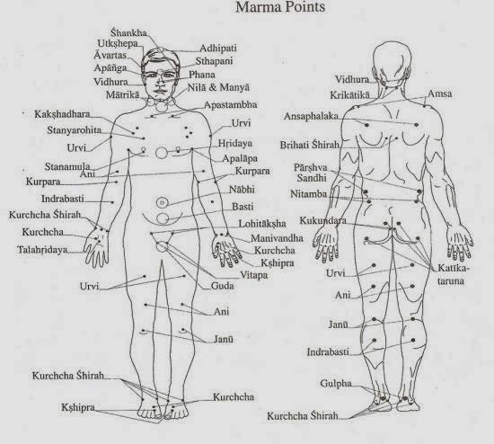 Of pdf points marma ayurveda