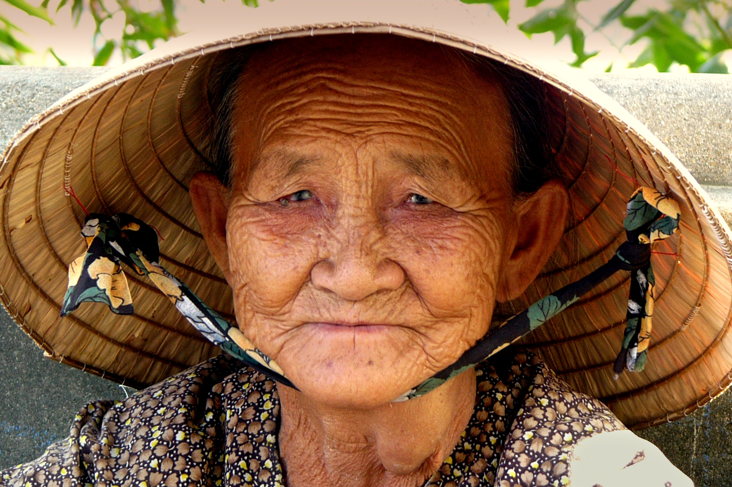 Old Asian Woman And 24