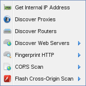 Options are: Get Internal IP Address, Discover Proxies, Discover Routers, Discover Web Servers (submenu), Fingerprint HTTP (submenu), CORS Scan (submenu), and Flash Cross-Origin Scan (submenu)