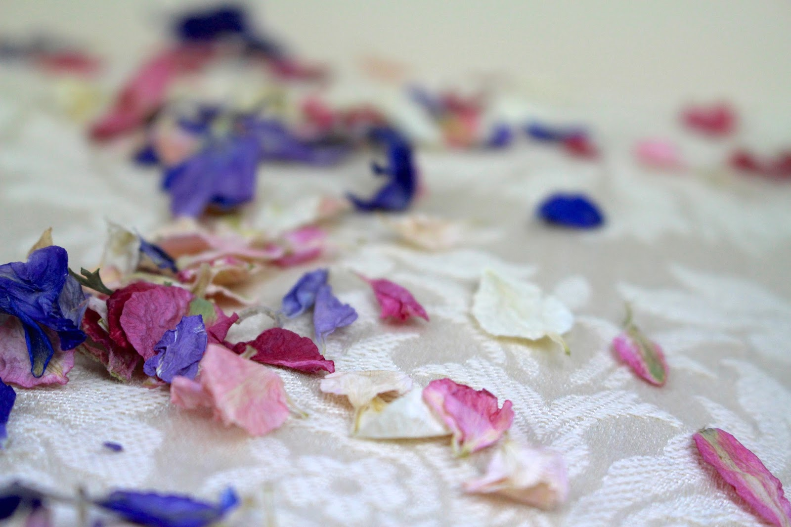 Dry Petal Confetti Photography