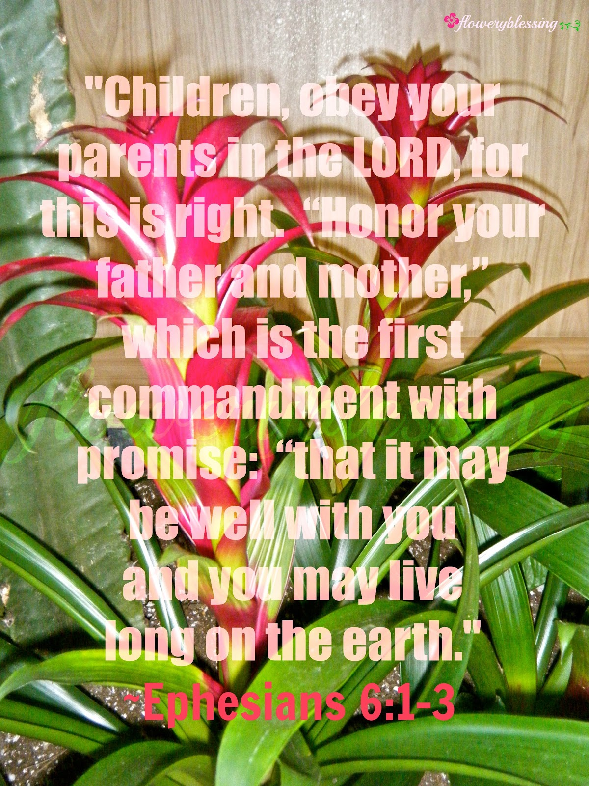Flowery Blessing Children Obey Your Parents In The