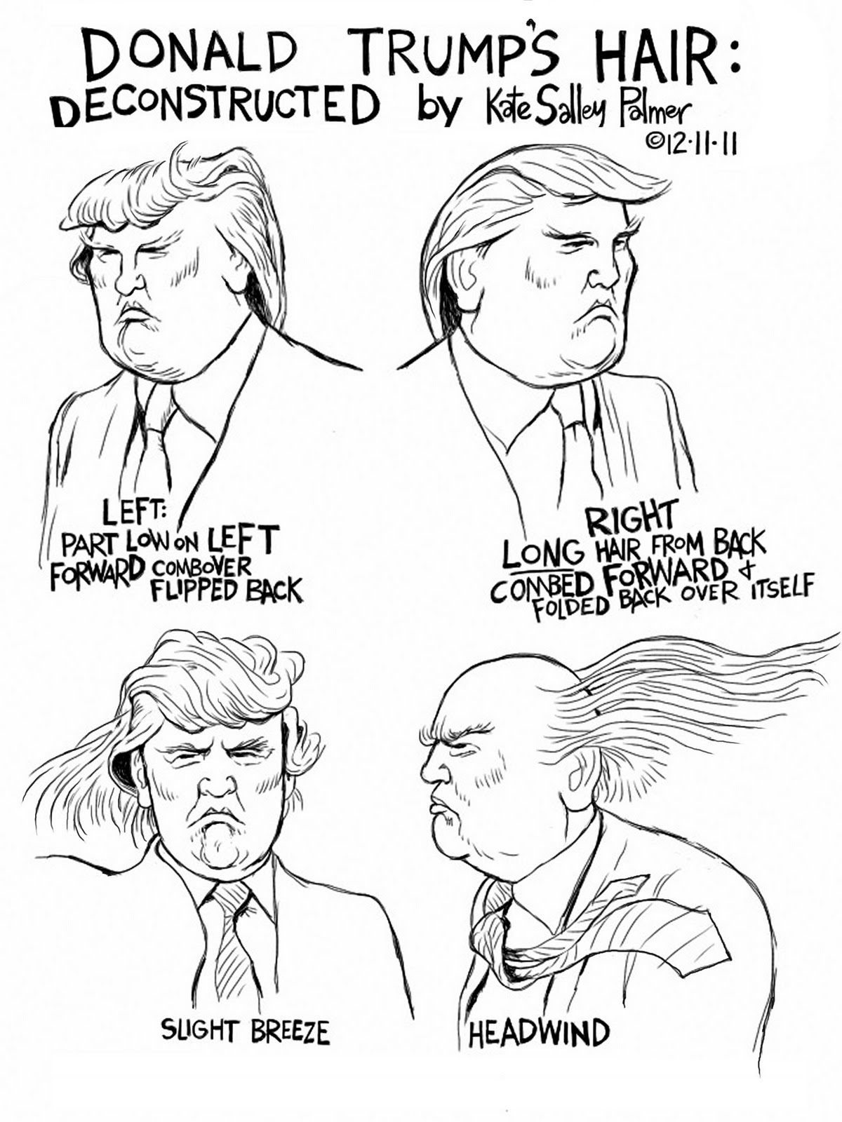 Pretty Is As Pretty Does A Map Of Donald Trump S Hair