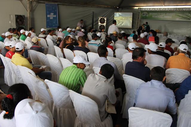 Qualidade e sustentabilidade do café de Rondônia tema de seminário estadual
