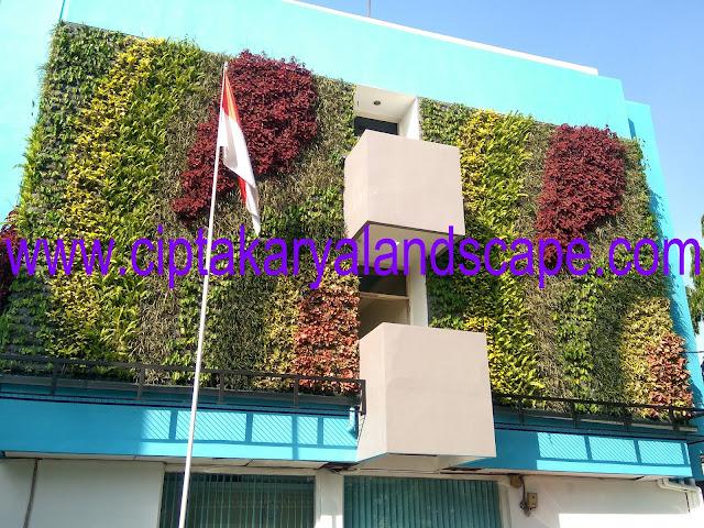 Jasa Vertikal Garden Jakarta Barat,Pusat,Timur,Utara Hingga Jakarta Selatan