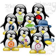 تعرف على قصة انشاء نظام التشغيل لينكس Learn about Linux OS creation story