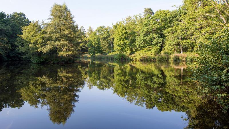 Loder Valley Nature Reserve. Wakehurst Kew
