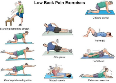 Back Exercises Strengthen The Back