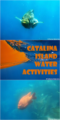 Travel the World: Travelers to Catalina Island California can choose from a number of water activities.