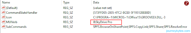 SkyDrive Pro registry Value