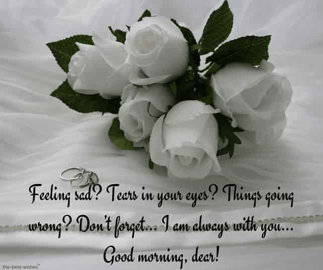 good morning messages to my dear love with white roses bouquet