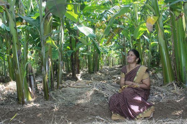 `வாவ்... இதுதான் உண்மையான இயற்கை விவசாயம்!' - ஜெர்மனி மூதாட்டியை அசர வைத்த கரூர் பெண்