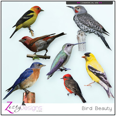 https://www.digitalscrapbookingstudio.com/commercial-use/elements/cu-bird-beauty/