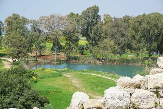 שמורת תל אפק במרכז- גן לאומי ירקון