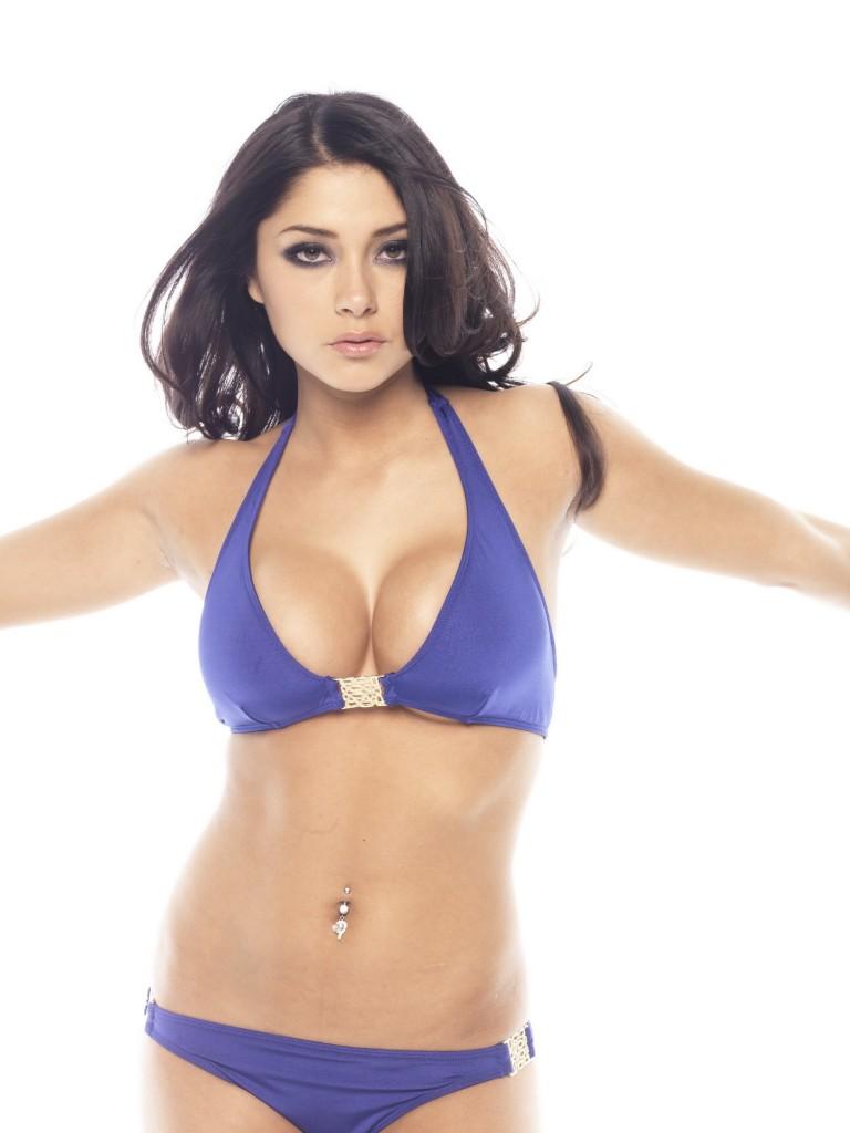Actress Desktop Pics: Hollywood Sexy Heroine Arianny ...