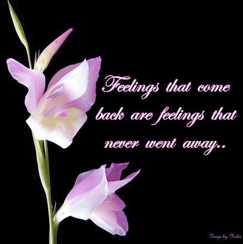 Download Free Wallpapers: Emotional Love Quotes Images And