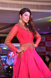 South Indian Celebrities Pos at Love For Handloom Collection Fashion Show  0092.jpg