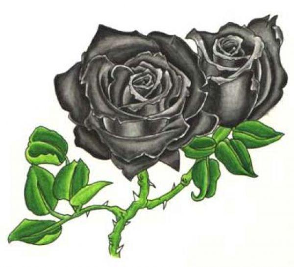 Tatuajes Rosas Negras Imagenes