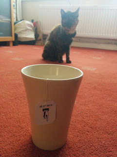 Tabby photo bombing my picture of my cup of Tea!