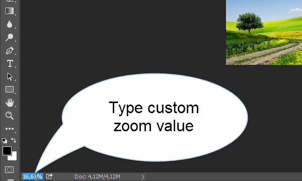 Custom Zoom Value in Photoshop