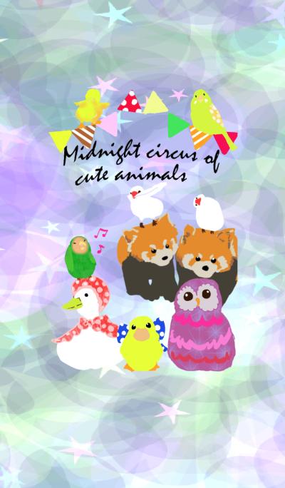 可爱的动物马戏团在午夜