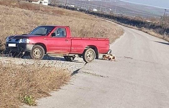 Βρέθηκε ο ανεγκέφαλος αγρότης που έσερνε χθες σκυλί με το αγροτικό του σε χωριό της Λάρισας