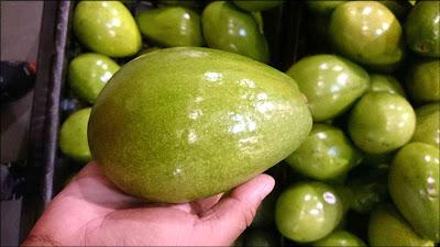 gambar buah alpukat segar