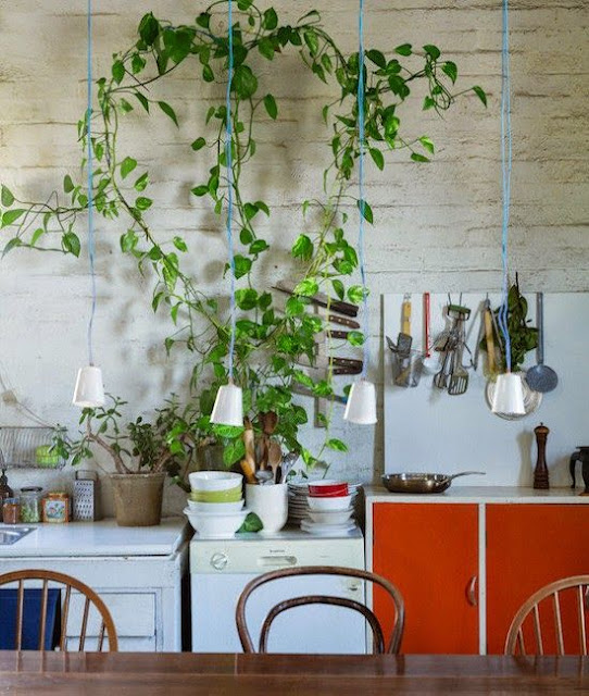 Moon To Moon: Kitchens: Au Naturale