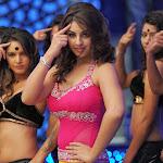 Richa Gangopadhyay wears very tight  wear